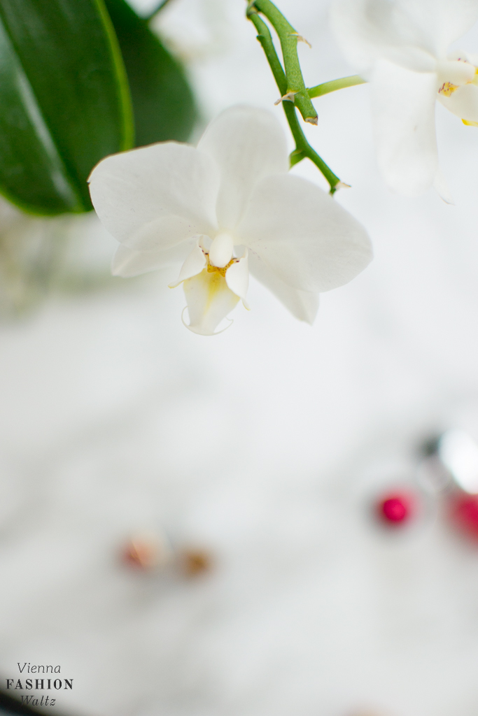 beauty-lifestyleblog-www-viennafashionwaltz-com-1019