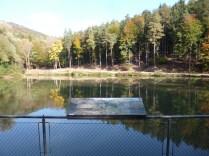 Sparbach pond
