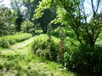 Stork trail