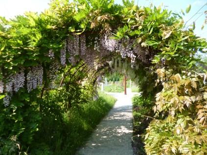 Tulln Gardens