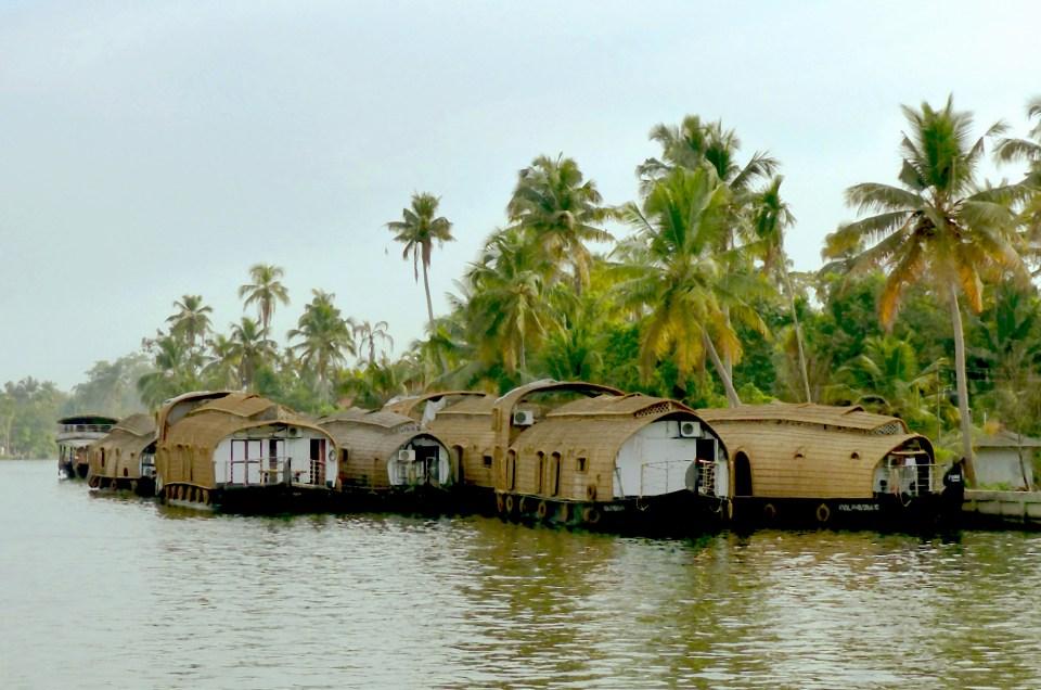 Les Backwaters : une pause au fil de l'eau.