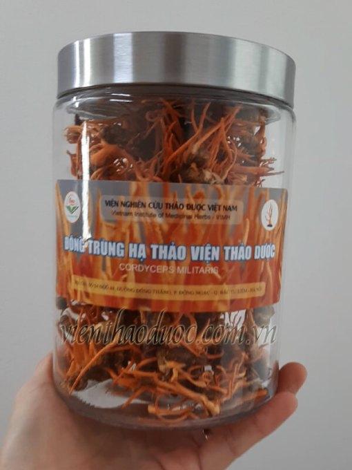 đông trùng hạ thảo nhộng khô 30gr