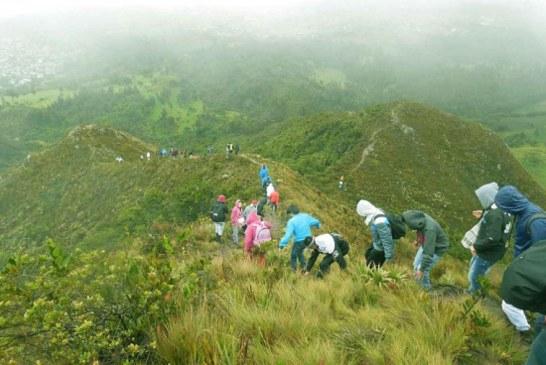 Recorrido por cuenca del Río Fucha aporta a recuperación ambiental de San Cristóbal