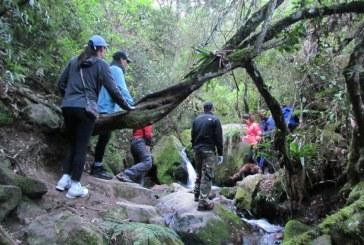 Acueducto de Bogotá recupera la quebrada Muralla en Ciudad Bolívar