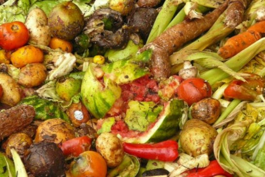 Plazas Distritales ahorran 70% por concepto de recolección de residuos