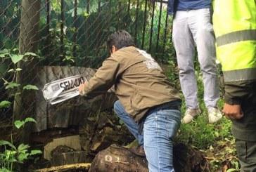 Alcaldía de Peñalosa cierra vertimientos de cuatro colegios del norte por contaminar humedales