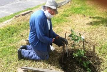 El Costo de Ser Anciano en Colombia
