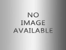 nobco-logo-voor-website