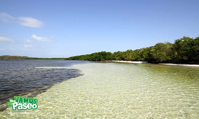 playa-medio-mundo-ceiba-puerto-rico-12