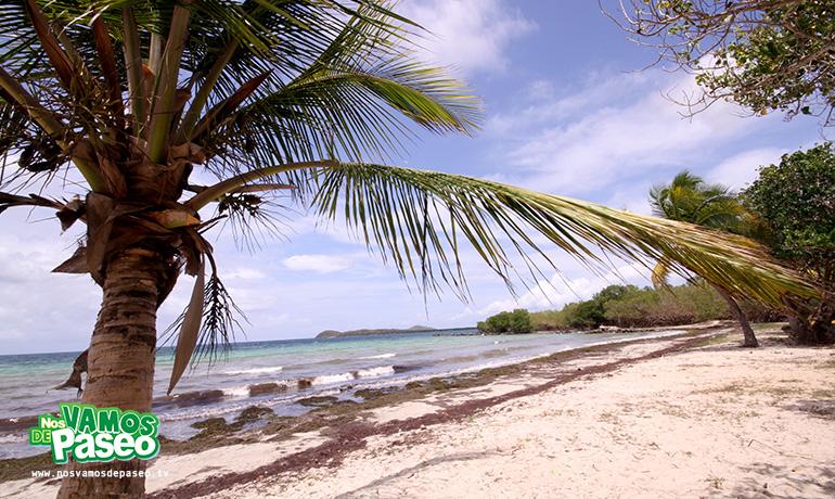 playa-medio-mundo-ceiba-puerto-rico-2
