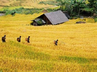 VIETNAM NORTHWEST VENTURING TOUR TOWARD SAPA