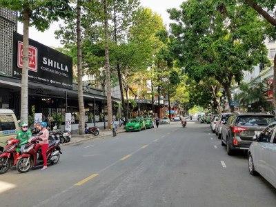 Vietnam_HoChiMinh_Dist7_Phu My Hung_SKy Garden_Street (1)