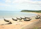 Thanh Binh Beach