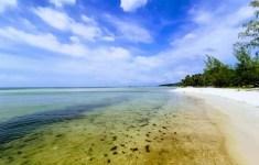 Пляж морских звезд