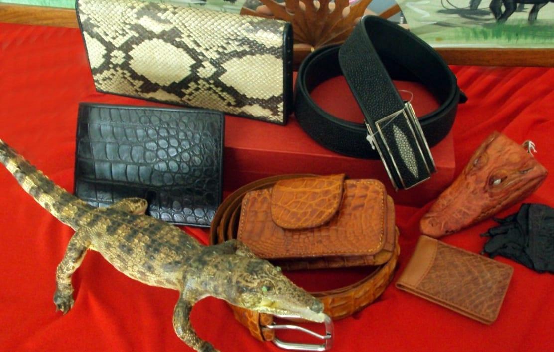 Изделия из крокодильей кожи