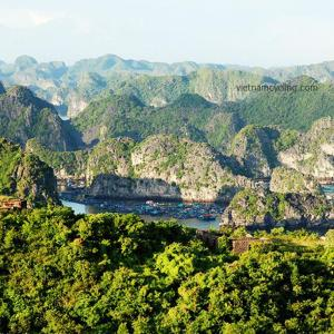 Cat Ba national park, Cat Ba Island