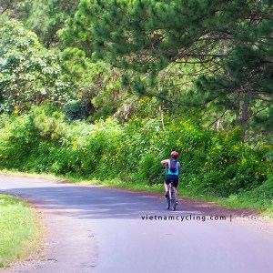 cycle, bike da lat nha trang 5