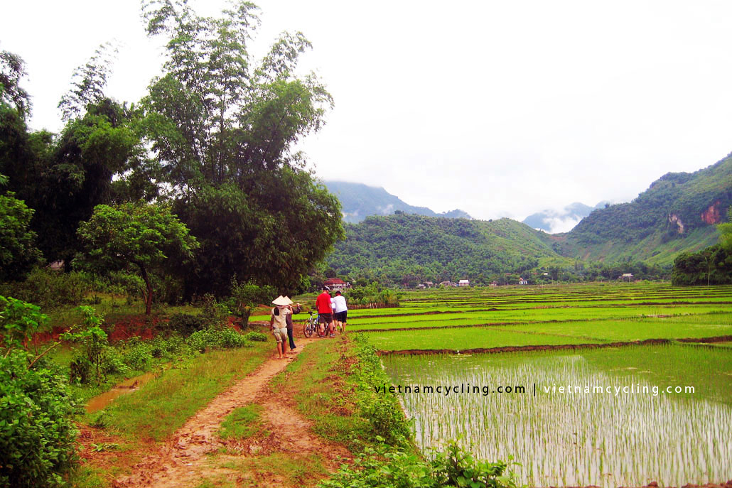 cycling mai chau vietnam