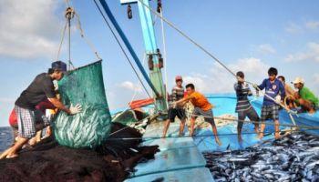 Kết quả hình ảnh cho Vietnam makes more drastic efforts to end illegal fishing