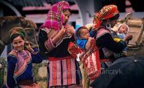Flower Hmong in Bac Ha