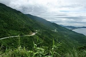 Hoi An Motorbike Tour to Hai Van Pass
