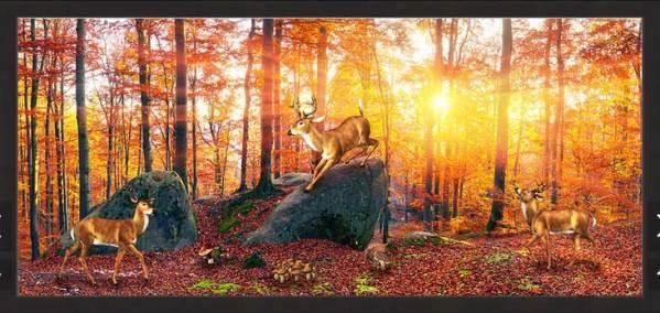 Đàn hươu trong rừng lúc bình minh treo tấm dài