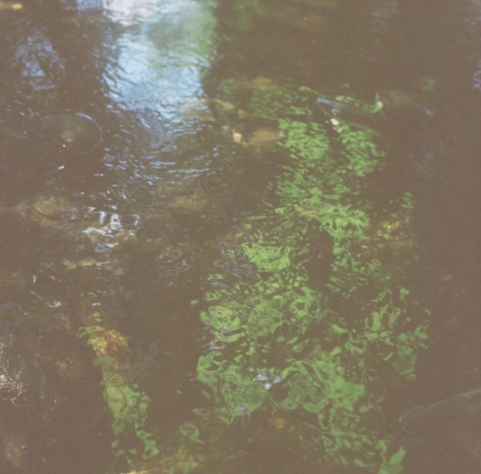 Weirs Project Summer 2   Nikki Gardner