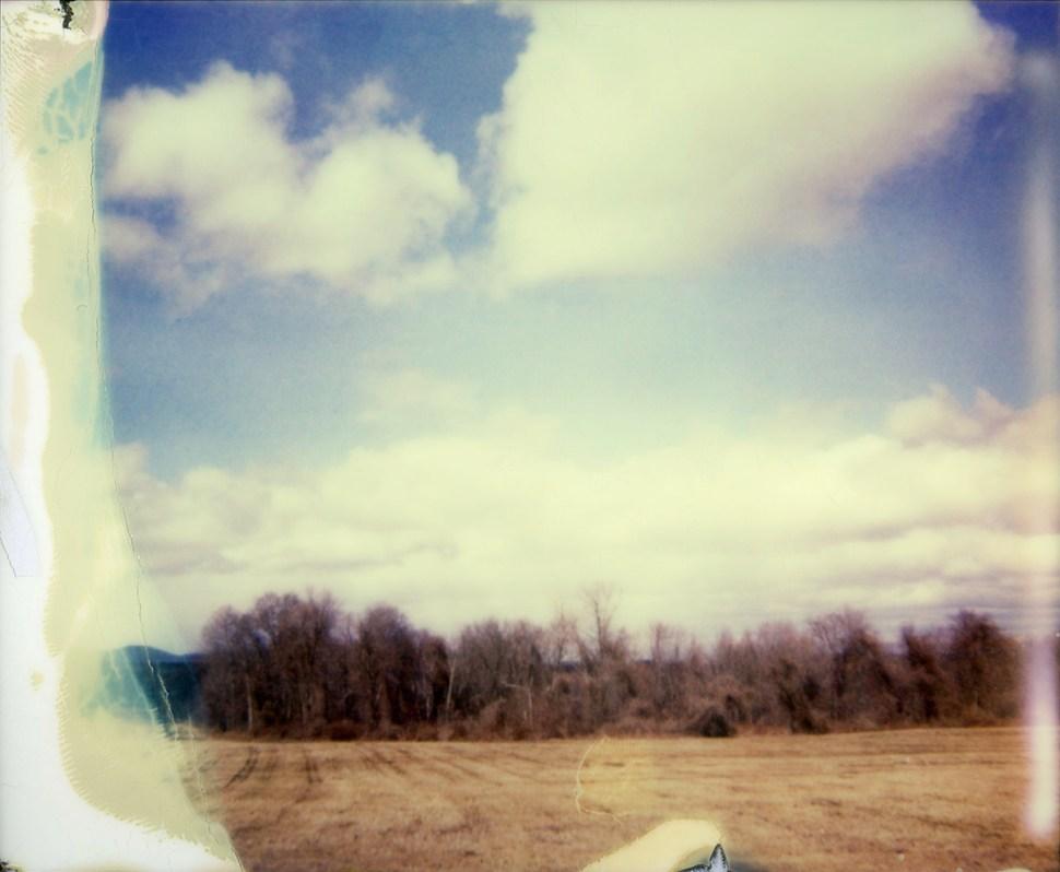 painterly field three by nikki gardner