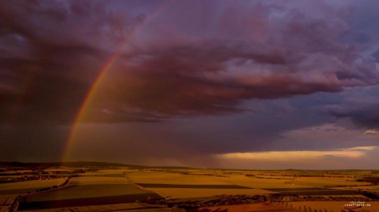 2019-06-19 Rainbow- Elm