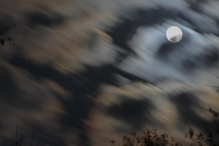 Dreamy trippy cloud motion above the trees and over the moon