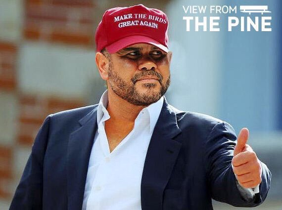 Make the Birds Oquendo Again