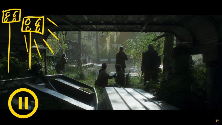 Annihilation Cinematography Breakdown | Indy Mogul