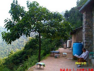Monk Xuyuan's former lodge