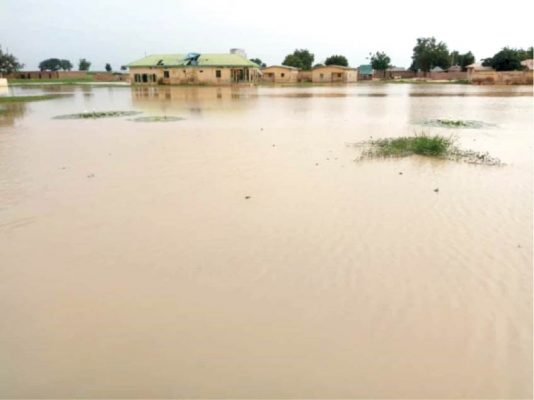 How flood submerged houses, road, school in Sokoto community