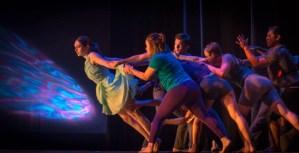 Celebrate Dance showcases past, present and future talent