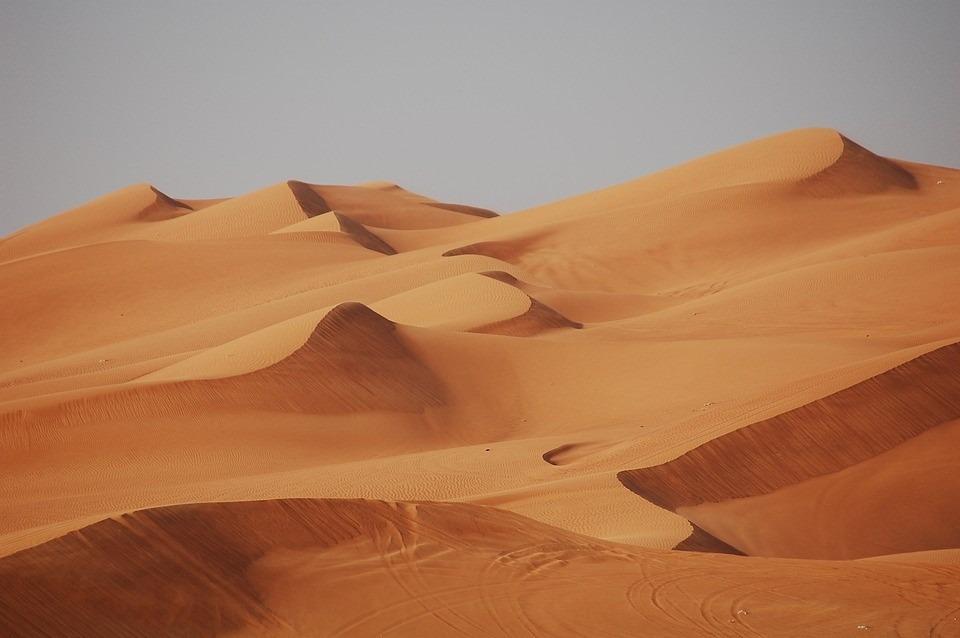Five Reasons Why You Should Plan a Trip to Dubai