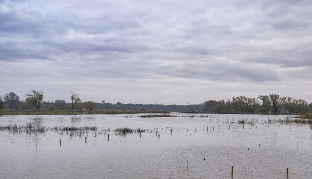 Flood Waters of Main Pits
