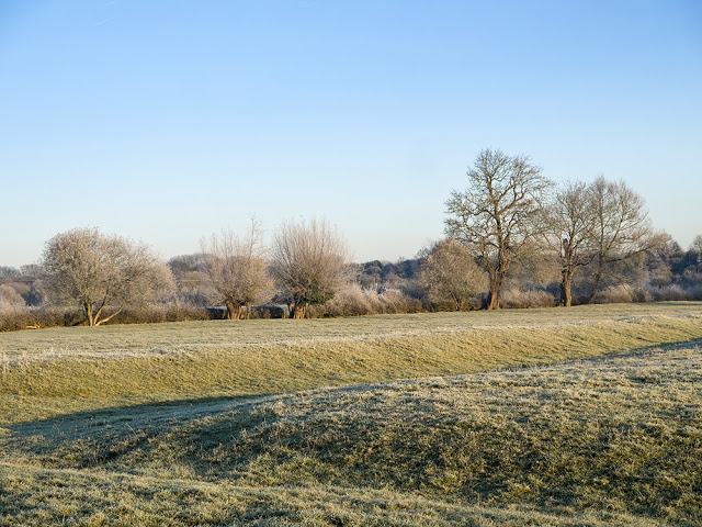 Frosty fields - you can see the ancient furrows of this field clearly here.