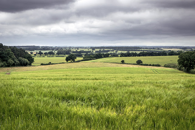 Buckinghamshire Countryside