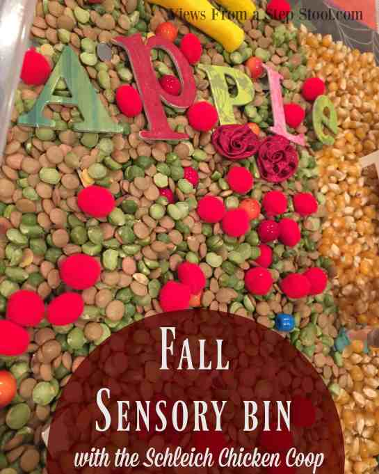 This fall sensory bin is so simple to make, with just some dried ingredients and fine motor tools, your kids will be learning and exploring all season long!