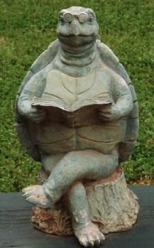 turtle 076