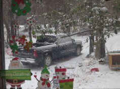 snowy day 011