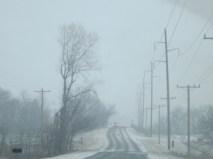 snowy day 077