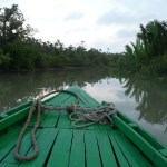 Sundarbans is the world's largest mangrove forest. (Photo by Sandy & Alan)
