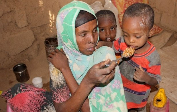 Shokuri Abdullai like most mothers in Bisle feeds her family boiled maize in the Somali region's Shinile zone (Ethiopia). (Photo by Jaspreet Kindra/IRIN)