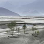 Indus delta in Pakistan's Sindh province. (Photo by zerega, Creative Commons License)
