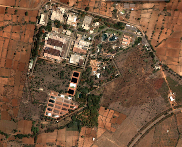 Satellite image of Maysor plant. (Photo via daijiworld.com)