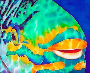 parrotfish-daniel-jean-baptiste