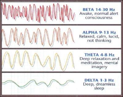 Types of brain waves in EEG