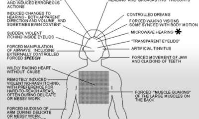"Government Files About ""Remote Mind Control"""
